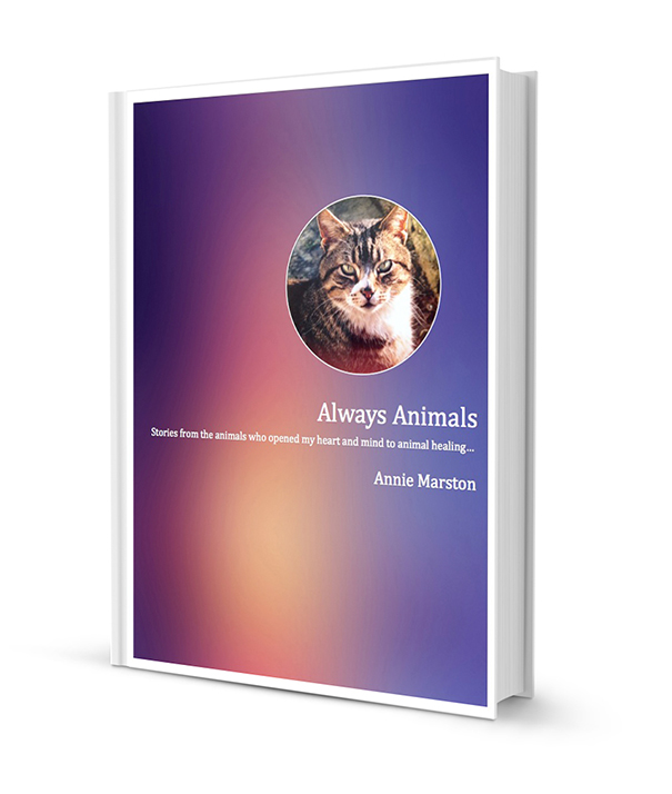 always animals ebook cover